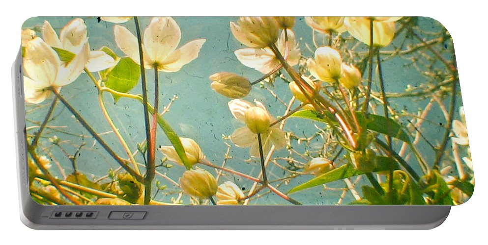 Flower Photograph Portable Battery Charger featuring the photograph Look Up And You Will See by Cassia Beck
