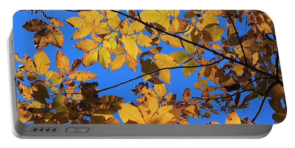 Yellow Leaves Portable Battery Charger featuring the photograph Looking Up To Yellow Leaves by Michael Saunders