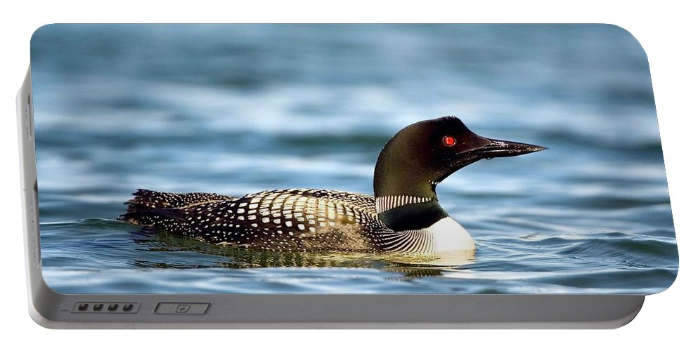 Common Loon Portable Battery Charger featuring the photograph Loons 7 by Randy Giesbrecht