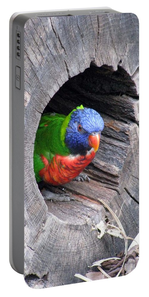 Lorikeet Portable Battery Charger featuring the photograph Lorikeet - Peek-a-boo by Pamela Critchlow