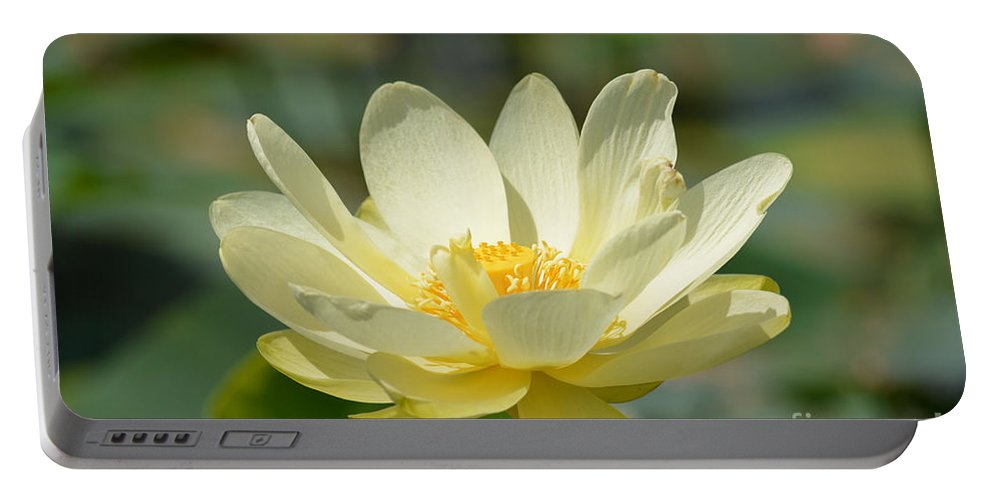 Lotus Flower Prints Portable Battery Charger featuring the photograph Lotus Blooming by Ruth Housley