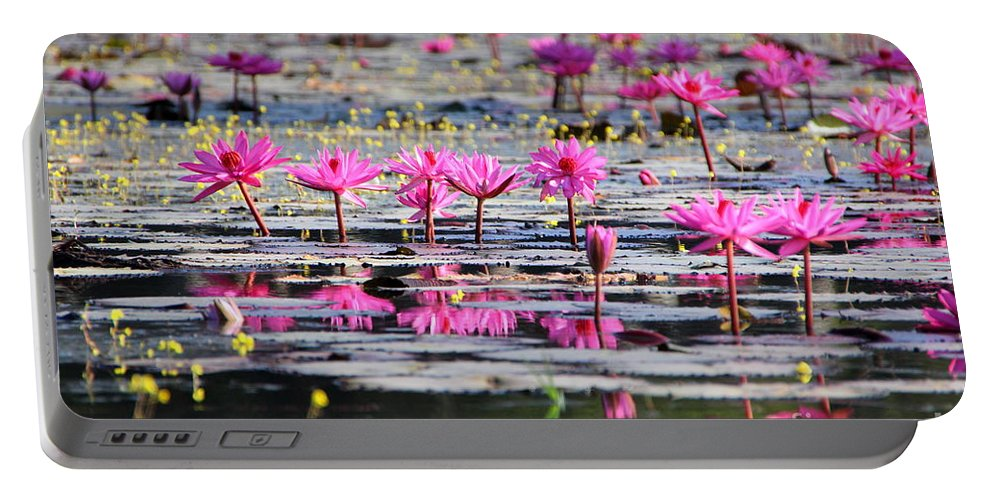 Aquatic Portable Battery Charger featuring the photograph Lotus Flowers by Amanda Mohler