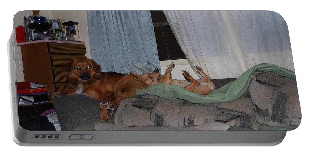 Time Out Time. Dogs Portable Battery Charger featuring the photograph Loungeing by Robert Floyd