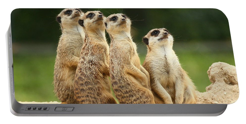 Meerkat Portable Battery Charger featuring the photograph Lovely Group Of Meerkats by Jaroslav Frank