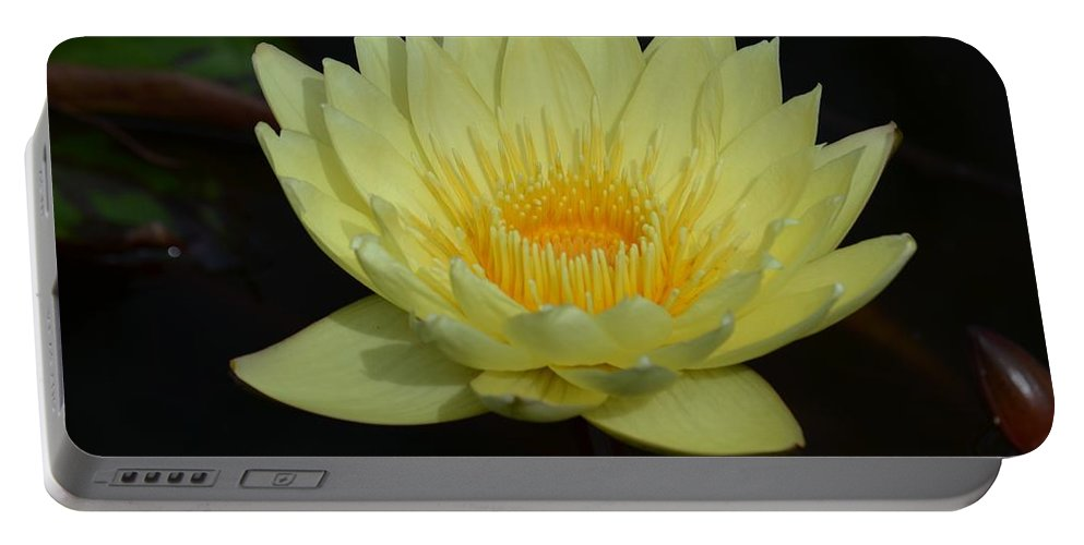 Lovely Lotus Portable Battery Charger featuring the photograph Lovely Lotus by Maria Urso
