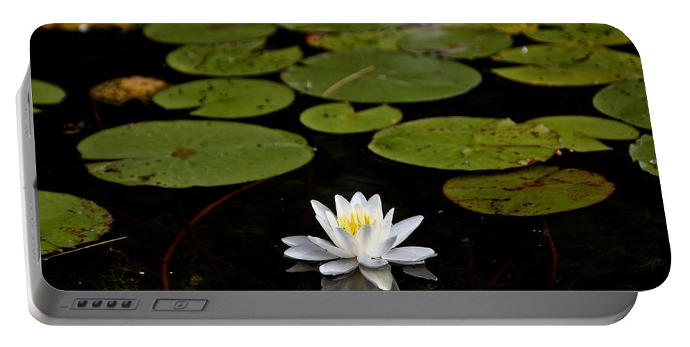 Portable Battery Charger featuring the photograph Lovely Pond Lily by Cheryl Baxter