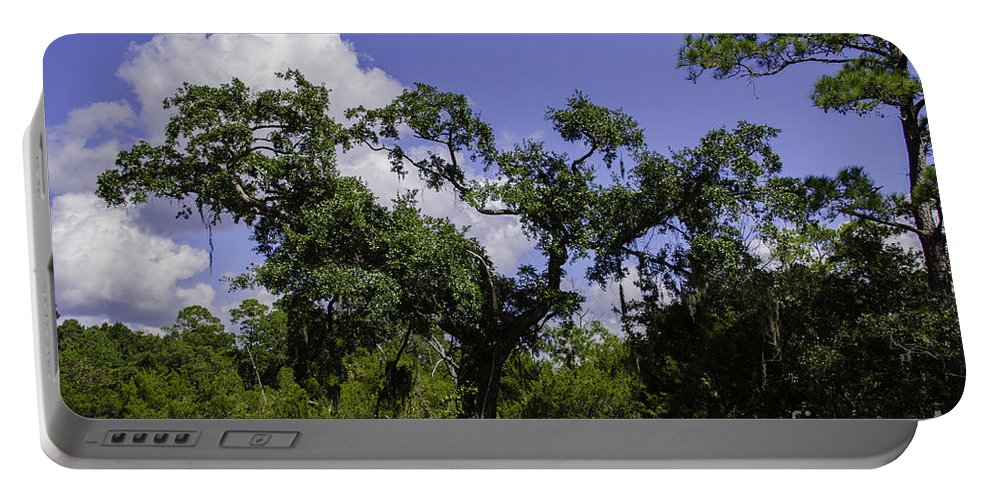 Live Oak Portable Battery Charger featuring the photograph Lowcountry Life Oaks by Dale Powell