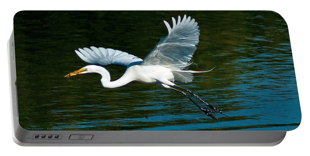 Snowy Egret Portable Battery Charger featuring the photograph Lucky Egret by Stephen Whalen
