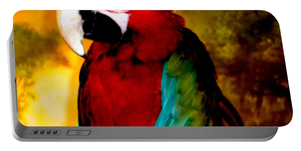 Colette Portable Battery Charger featuring the photograph Lucky Look Bird by Colette V Hera Guggenheim