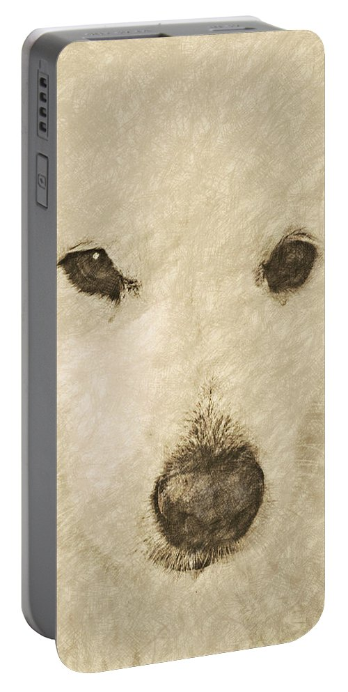 Dog Portable Battery Charger featuring the digital art Lucy Silver Point Hp by David Lange