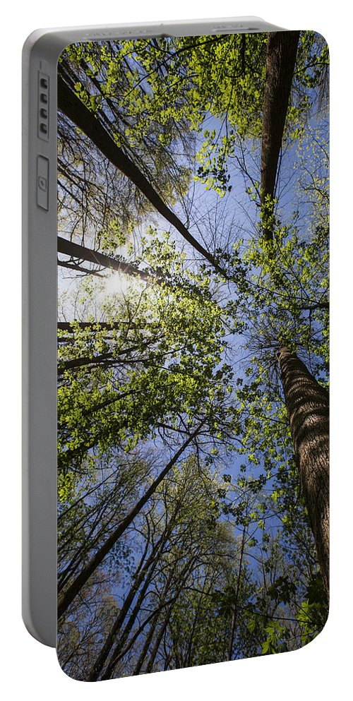Appalachia Portable Battery Charger featuring the photograph Lumberjack Heaven by Debra and Dave Vanderlaan