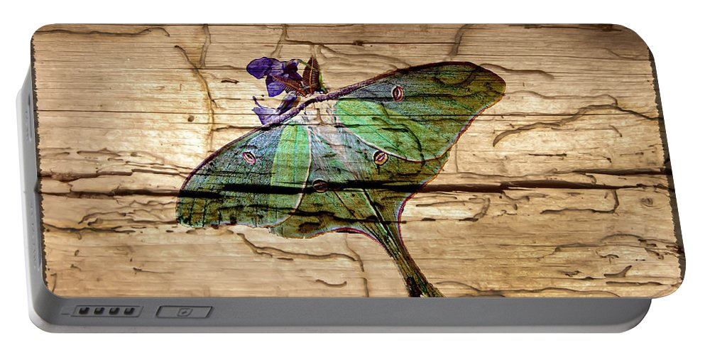 Luna Moth Portable Battery Charger featuring the photograph Luna Moth Worm Wood by Randall Branham