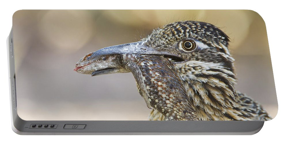 Roadrunner Portable Battery Charger featuring the photograph Lunch Time by Bryan Keil