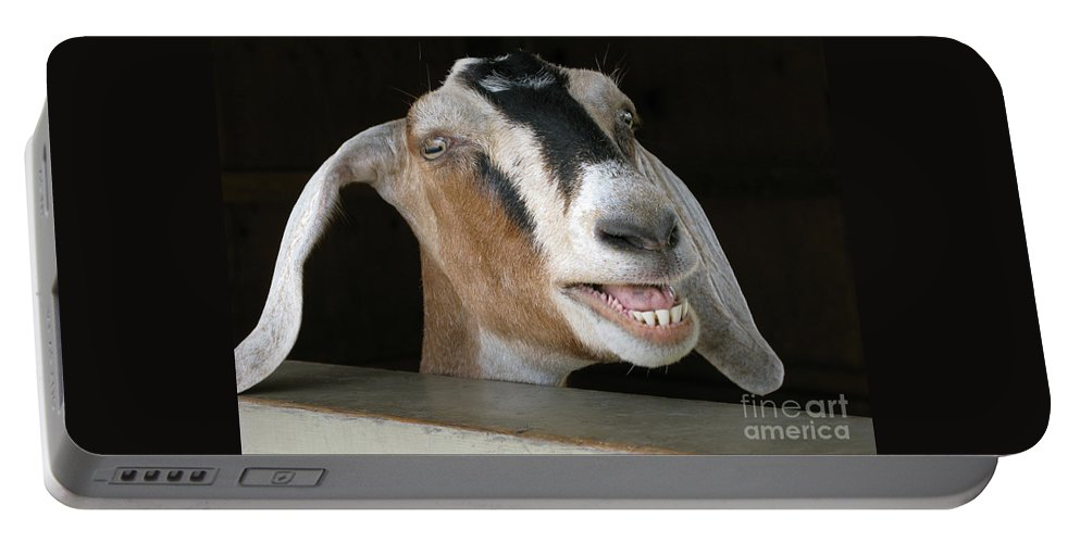 Goat Portable Battery Charger featuring the photograph Maa-aaa by Ann Horn