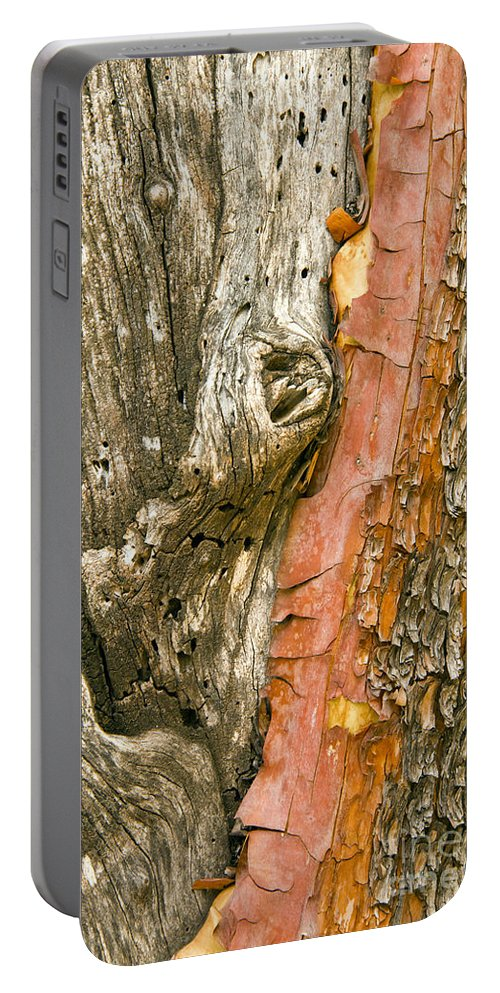 Guadalupe Mountains National Park Texas Mckittrick Canyon Trail Trails Madrone Tree Trees Bark Nature Portable Battery Charger featuring the photograph Madrone Tree Bark by Bob Phillips