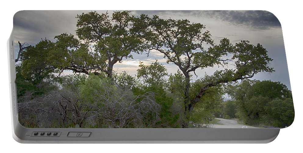 Wildflowers Portable Battery Charger featuring the photograph Magical Tree by Douglas Barnard
