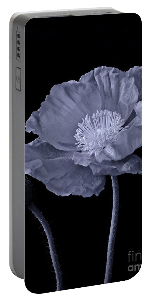 Magnificent Simplicity Cyan Portable Battery Charger featuring the photograph Magnificent Simplicity Cyan by Chalet Roome-Rigdon
