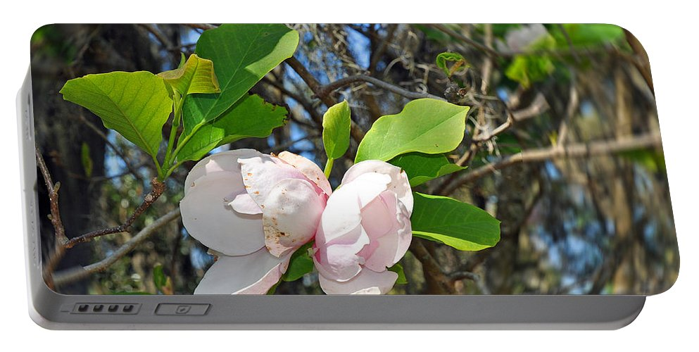 Floral Portable Battery Charger featuring the photograph Magnolia Flower by Deborah Good