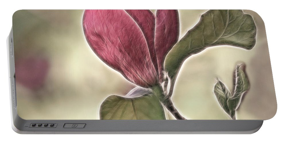 Magnolia Portable Battery Charger featuring the photograph Magnolia Glow by Susan Candelario