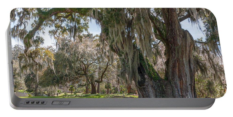 Majestic Live Oak Tree Portable Battery Charger featuring the photograph Majestic Live Oak Tree by Dale Powell