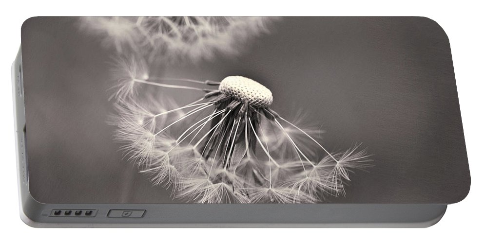 Flower Head Portable Battery Charger featuring the photograph make a wish I by Priska Wettstein