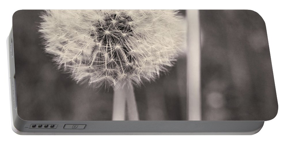 Flower Head Portable Battery Charger featuring the photograph make a wish II by Priska Wettstein