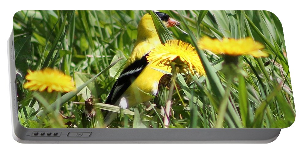 American Goldfinch Portable Battery Charger featuring the photograph Male American Goldfinch Camouflage by J McCombie
