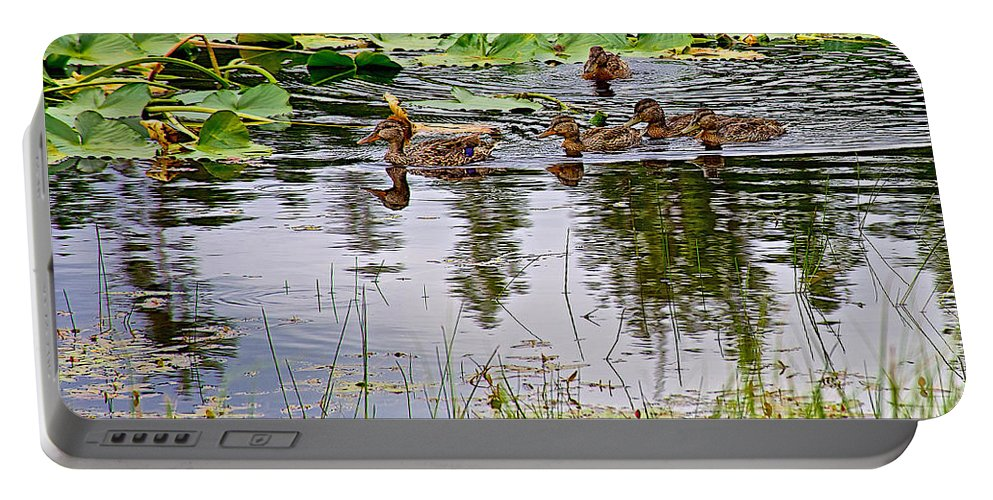 Mallard Ducks In Heron Pondl In Grand Teton National Park Portable Battery Charger featuring the photograph Mallard Ducks In Heron Pond In Grand Teton National Park-wyoming by Ruth Hager