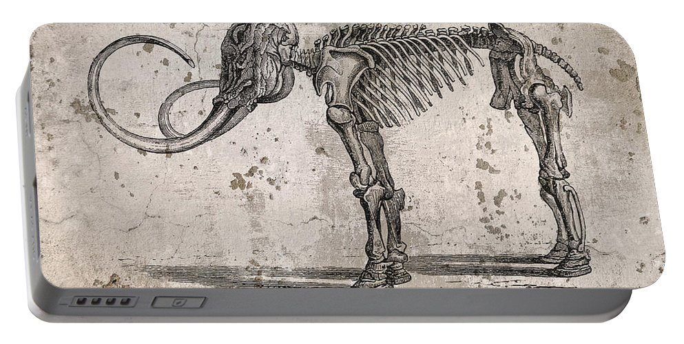 Mammoth Portable Battery Charger featuring the photograph Mammoth Skeleton by John Cardamone