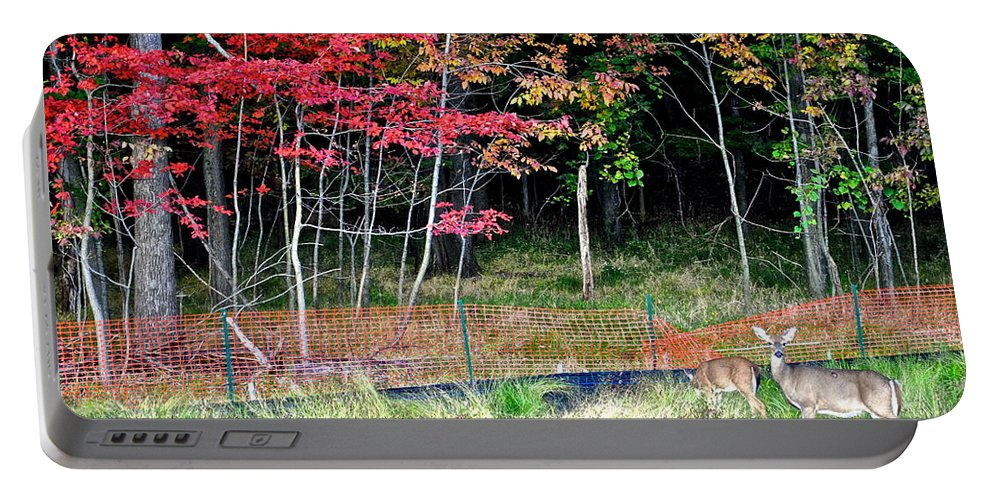 Nature Portable Battery Charger featuring the photograph Man Ruins Nature by Frozen in Time Fine Art Photography