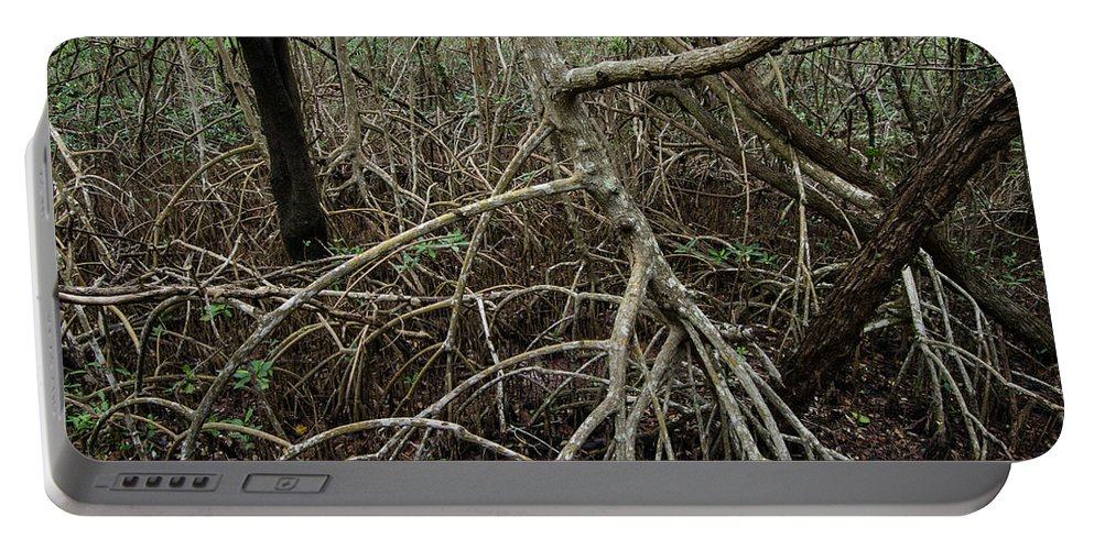 Branches Portable Battery Charger featuring the photograph Mangrove Roots 2 by Tracy Knauer
