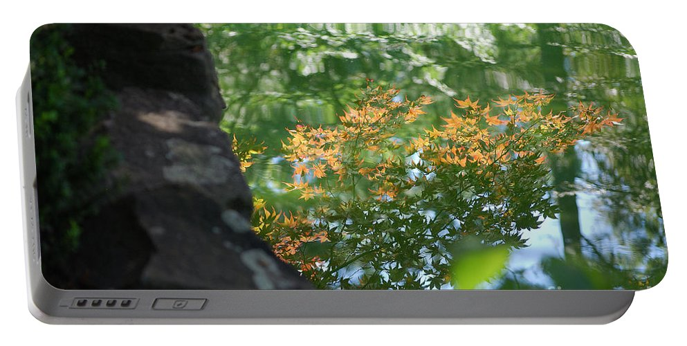 Maple Portable Battery Charger featuring the photograph Maple Reflections by Sharon Elliott