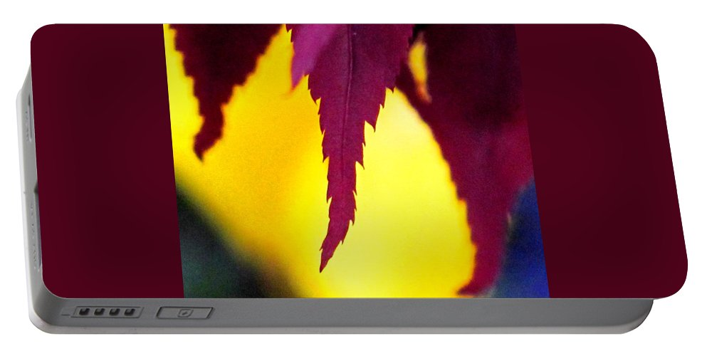 Maroon Portable Battery Charger featuring the photograph Maroon And Yellow by Ian MacDonald