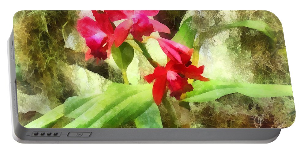 Cattleya Portable Battery Charger featuring the photograph Maroon Cattleya Orchids by Susan Savad