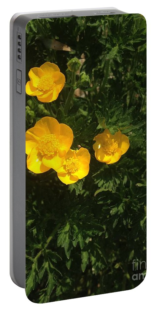 Yellow Blooms Portable Battery Charger featuring the photograph Martha's Flowers by Joseph Yarbrough