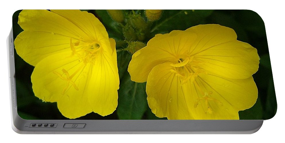 Yellow Flowers Portable Battery Charger featuring the photograph Matching Pair by Sara Raber