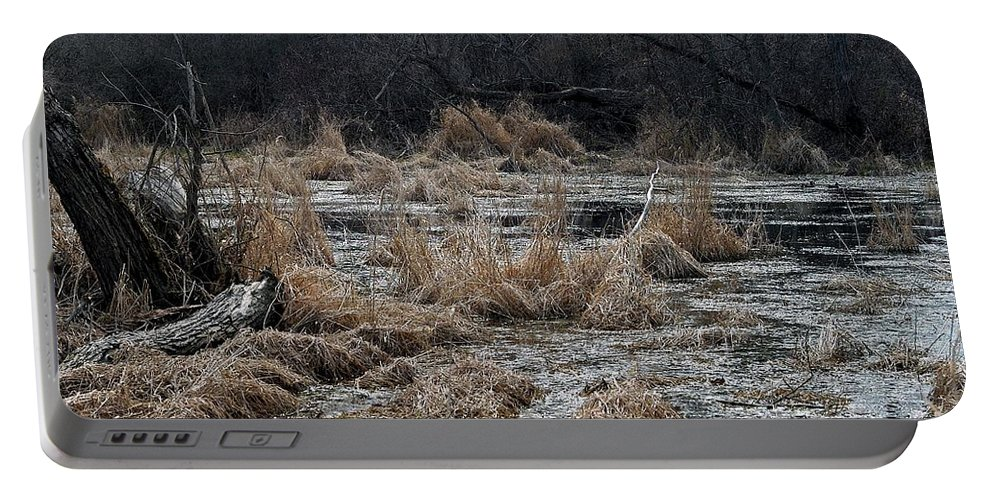 Wetland Portable Battery Charger featuring the photograph Mates by Joseph Yarbrough