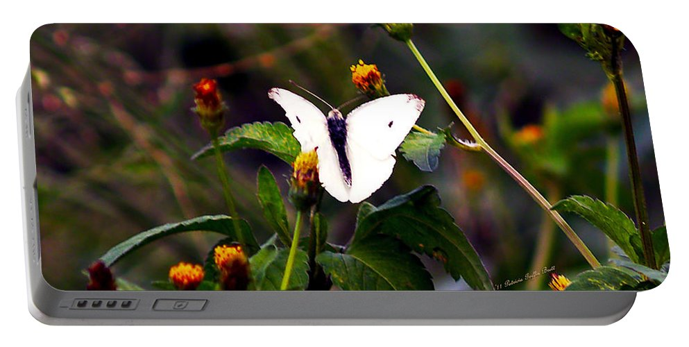 Fine Art Photography Portable Battery Charger featuring the photograph Maui Butterfly by Patricia Griffin Brett