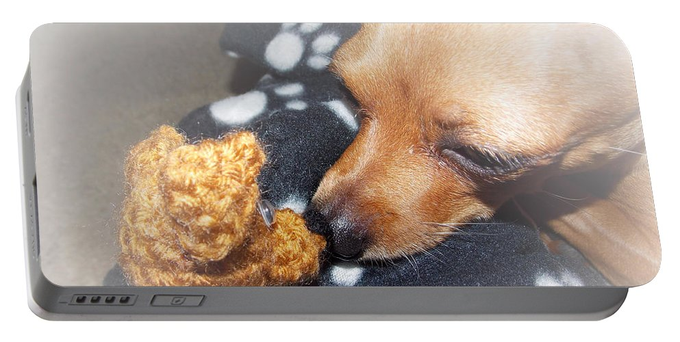 Dog Portable Battery Charger featuring the photograph Max And His Mini Me by Shana Rowe Jackson