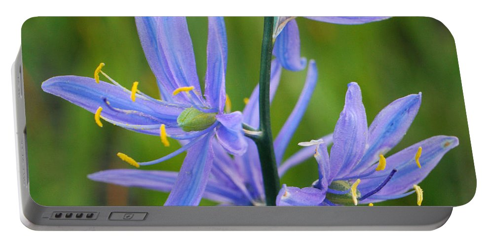 Camas Portable Battery Charger featuring the photograph Meadow Camas by Brad Christensen