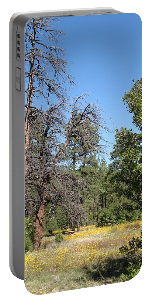 Plateau Portable Battery Charger featuring the photograph Meadow Over Oak Creek Canyon by Christiane Schulze Art And Photography