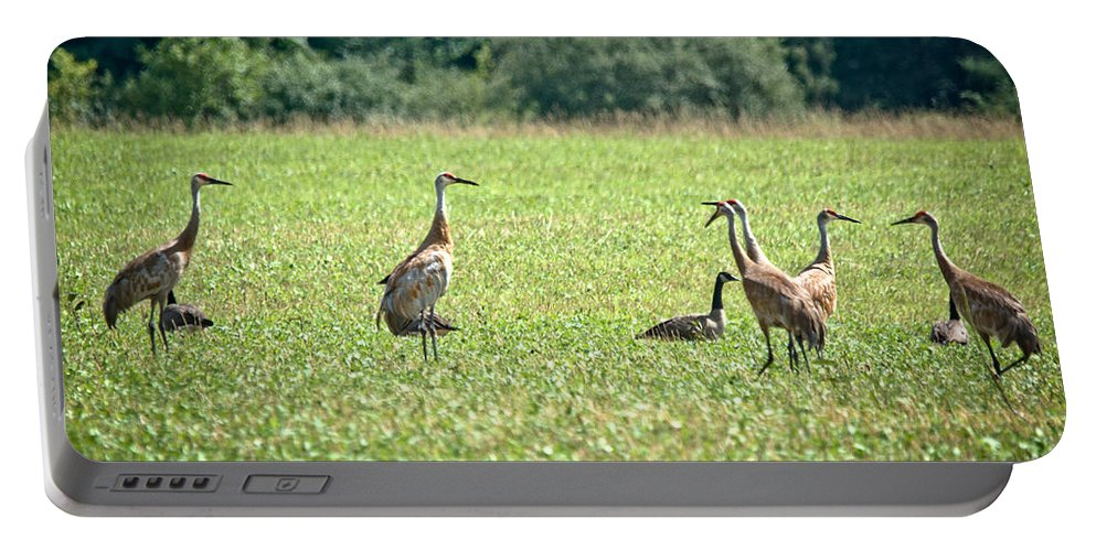 Sandhill Cranes Portable Battery Charger featuring the photograph Meeting Of The Cranes by Cheryl Baxter