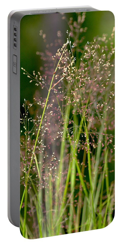 Floral Portable Battery Charger featuring the photograph Memories Of Springtime by Holly Kempe