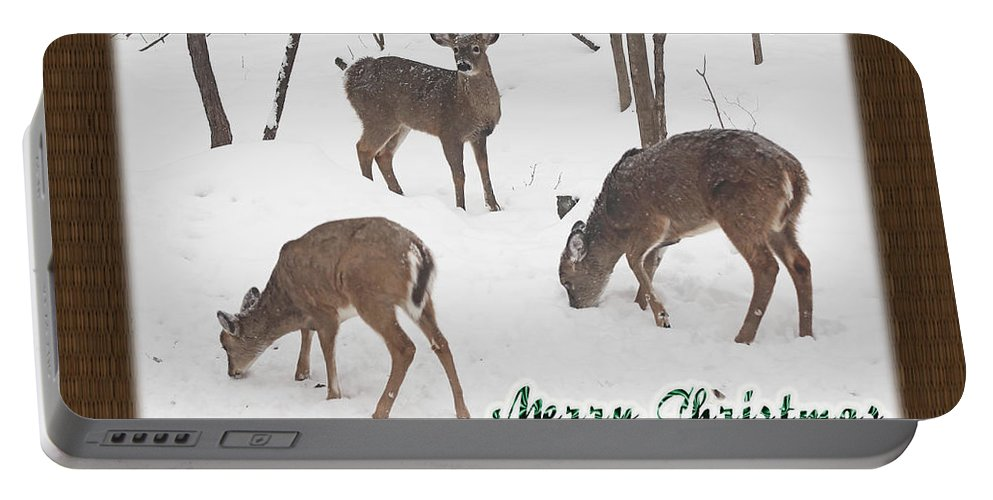 Christmas Portable Battery Charger featuring the photograph Merry Christmas Card - Whitetail Deer In Snow by Mother Nature