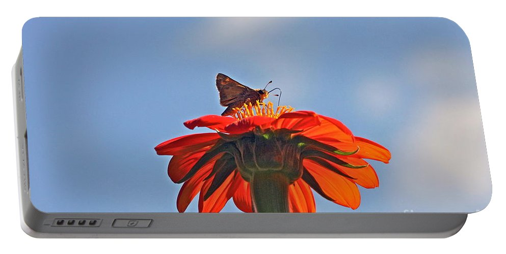 Mexican Sunflower And Skipper Butterfly Portable Battery Charger featuring the photograph Mexican Sunflower Hat Dance by Byron Varvarigos