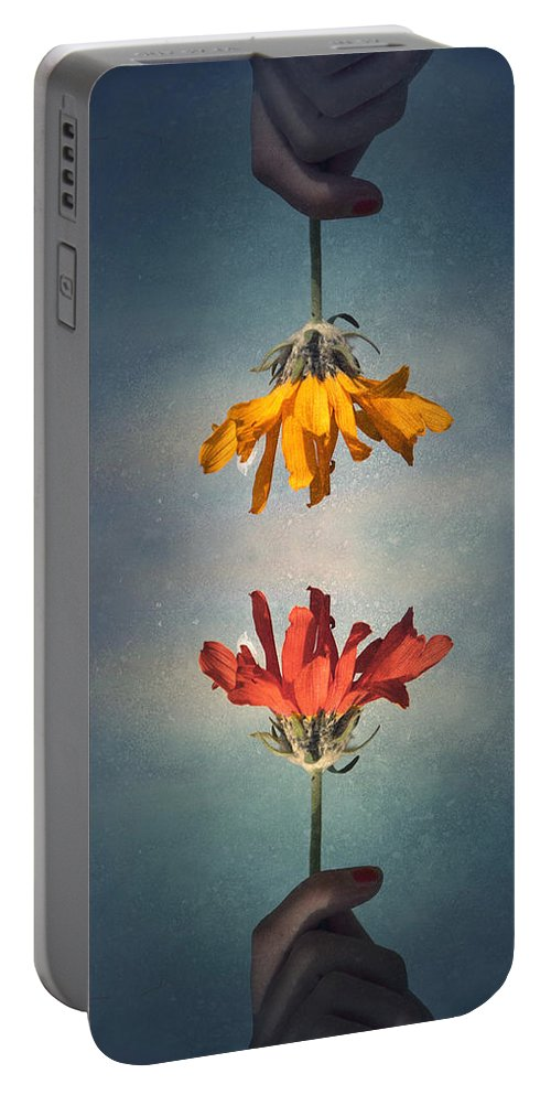 Middle Ground Portable Battery Charger featuring the photograph Middle Ground by Tara Turner