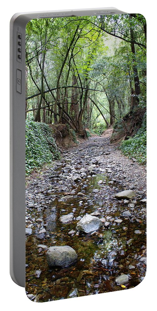 Tamalpais Portable Battery Charger featuring the photograph Miller Grove 2013 Vertical by Ben Upham III