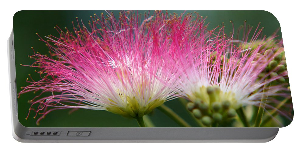 The Mimosa Portable Battery Charger featuring the photograph Mimosa by Kim Pate
