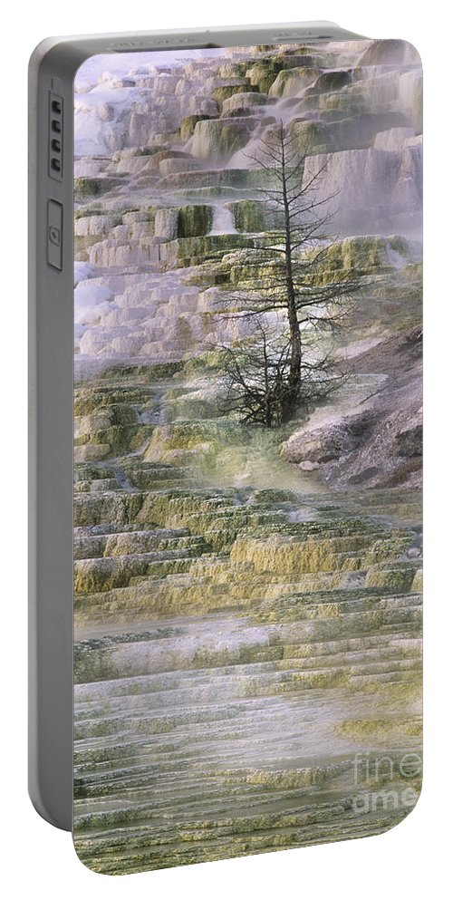 North America Portable Battery Charger featuring the photograph Minerva Springs Terraces Yellowstone National Park by Dave Welling
