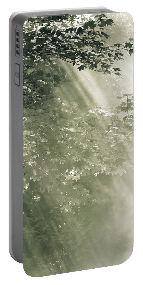 Misty Forest Foliage Portable Battery Charger featuring the photograph Misty Forest by Peter v Quenter